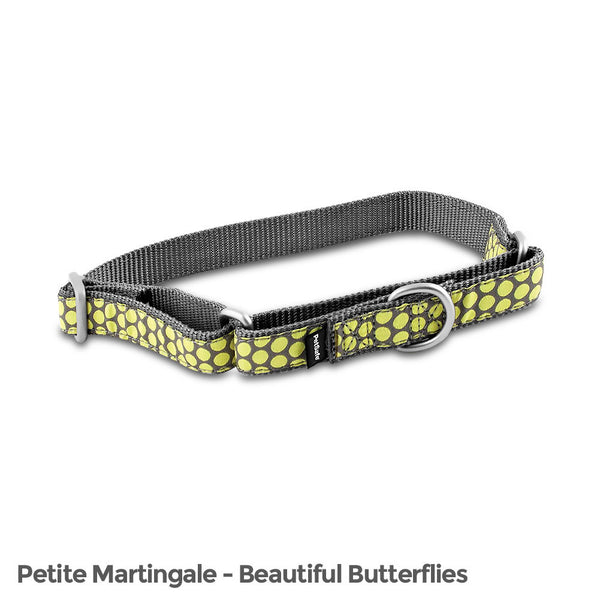 PetSafe Fido Finery Martingale Style Collar (1/2 Petite, Dotted Bliss) - FIN-PRC-P-1/2-DOT