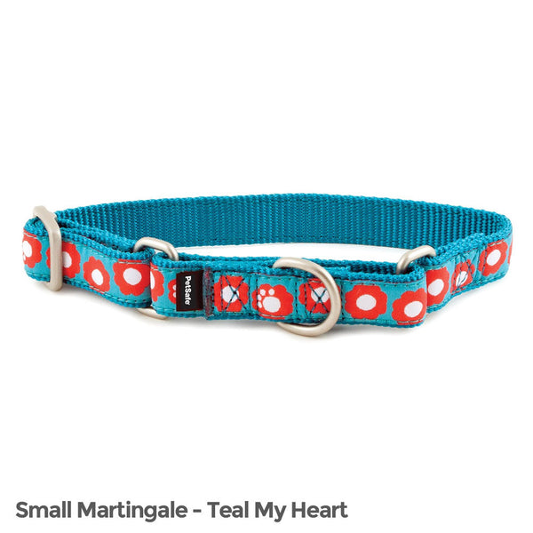 PetSafe Fido Finery Martingale Style Collar (3/4 Small, Teal My Heart) - FIN-PRC-S-3/4-TEA