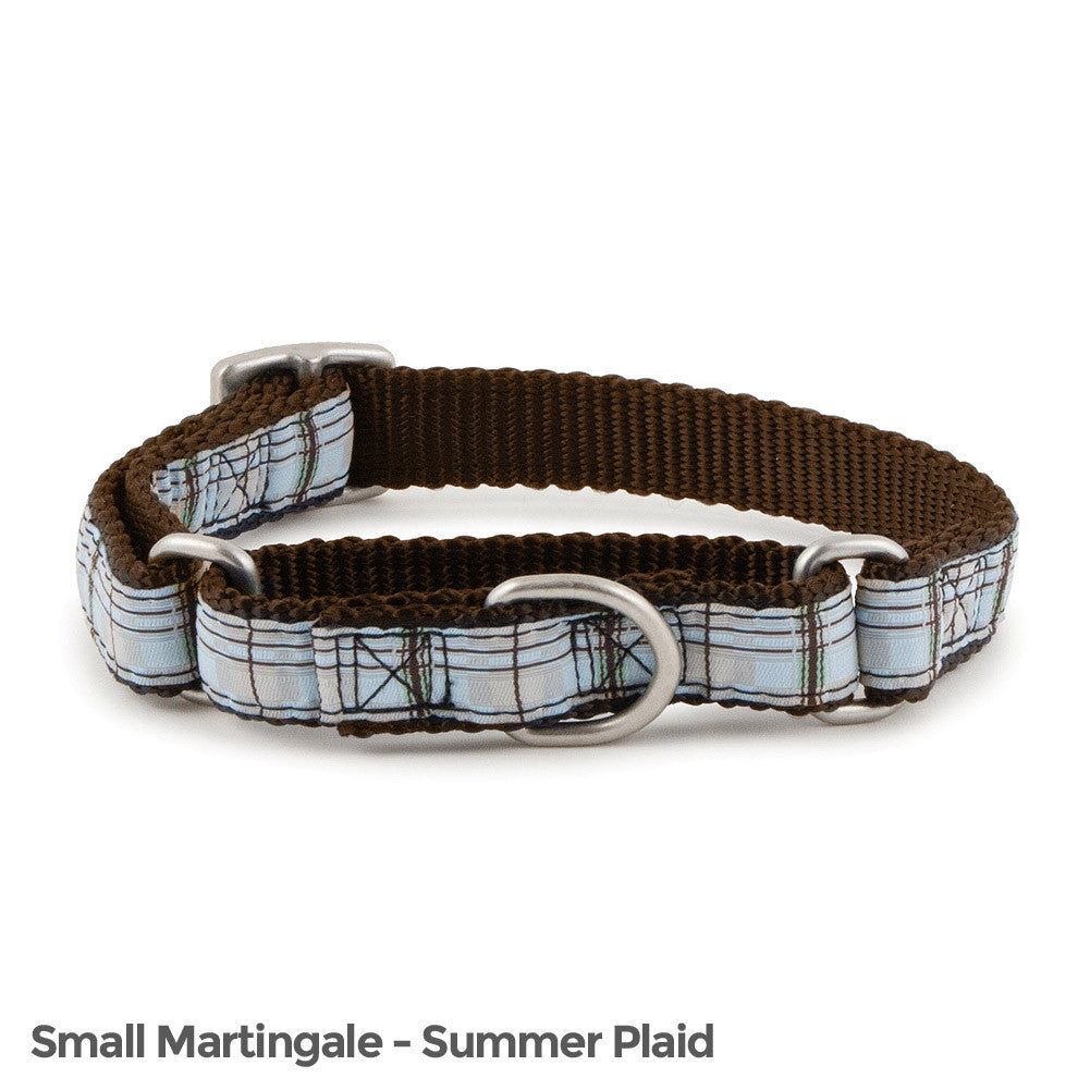 PetSafe Fido Finery Martingale Style Collar (3/4 Small, Summer Plaid) - FIN-PRC-S-3/4-SUP