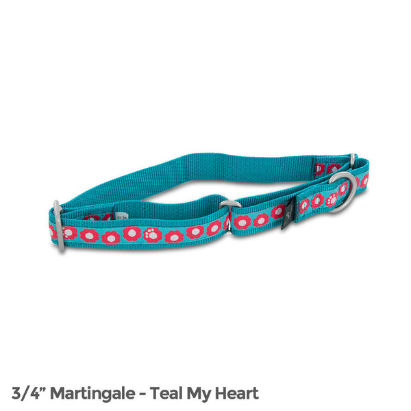 PetSafe Fido Finery Martingale Style Collar (3/4 Medium, Teal My Heart) - FIN-PRC-M-3/4-T