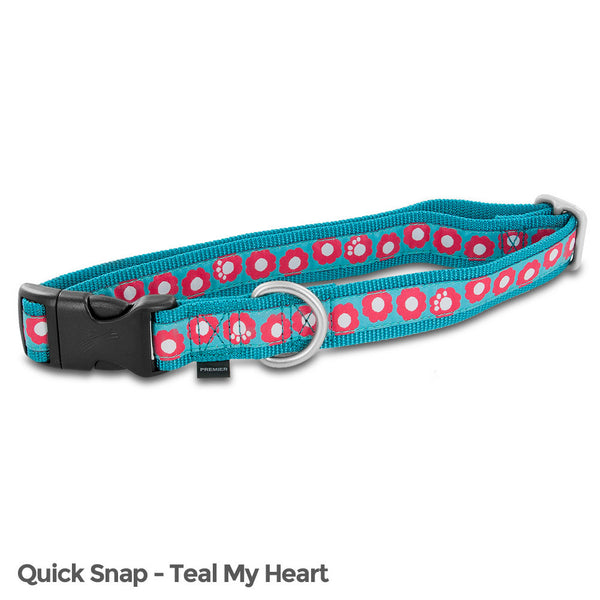PetSafe Fido Finery Quick Snap Collar (Large, Teal My Heart) - FIN-QSC-L-1-TEA