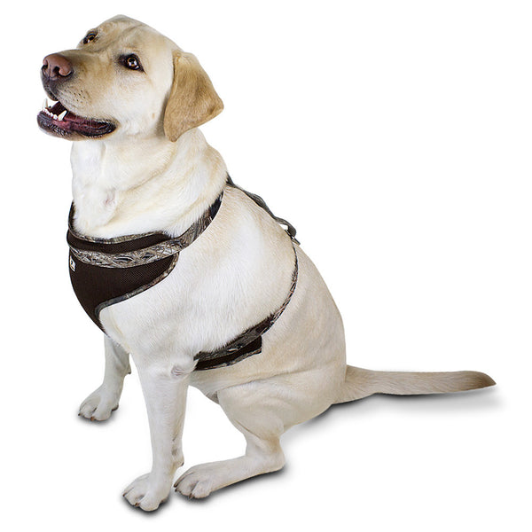 Mossy Oak Mesh Dog Harness, Duck Blind, Large - 23857-08