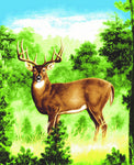 Mink Style Queen Size Blanket, Deer in Woods, Q945