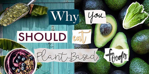 Why You Should Eat Plant Based Foods