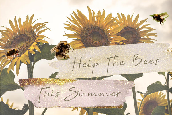 How To Help The Bees This Summer