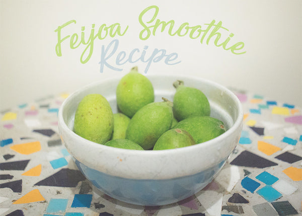 Feijoa Smoothie Recipe