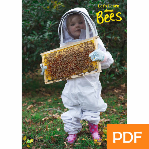 Let's Learn about Bees eBook