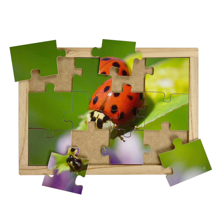 Australian-made wooden puzzle, featuring photograph of a red lady beetle sitting on a green leaf. Designed for childcare.