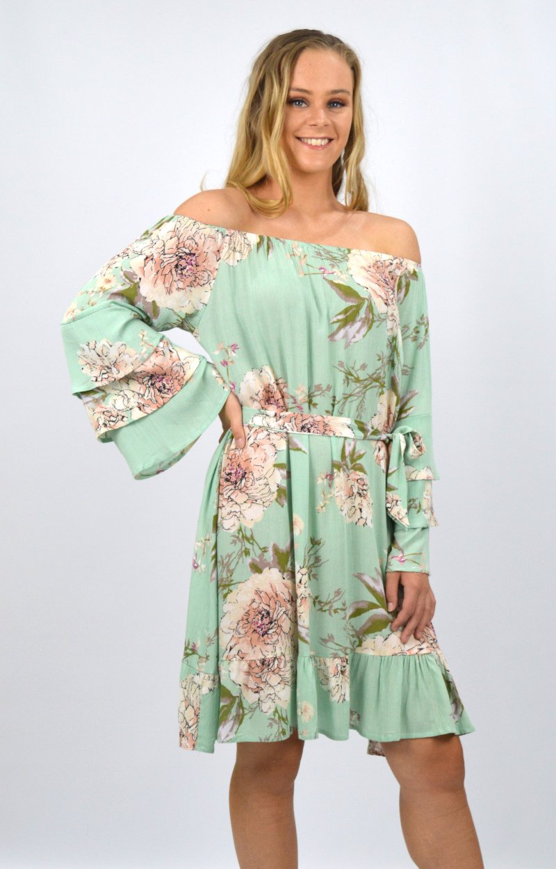 Asha Dress in Mint Floral