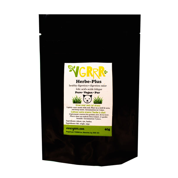 VGRRR Herbe-Plus Cat Grass - Cats