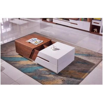Modern Creative Panel Wooden Coffee Table - My Aashis