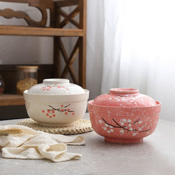 Ceramic Floral Noodle Bowl & Lunch Box - My Aashis