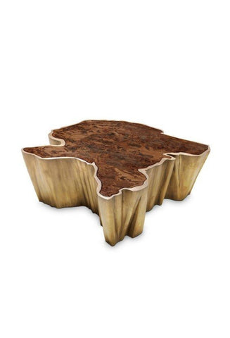 Ultra Wooden Shade Steel Coffee Table - My Aashis