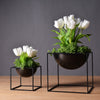 Modern Waterproof Cube Metal Flower Plant Pot Home Decoration - My Aashis