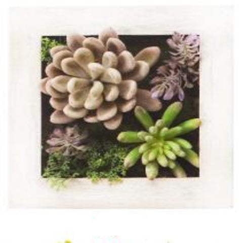 3D Wood Photo Frame Wall Decoration Artificial Flowers - My Aashis