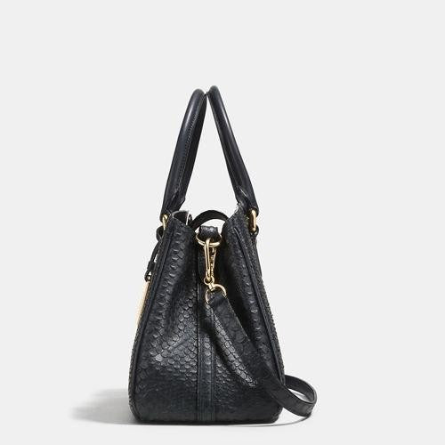 Coach Outlet Mini Empire Carryall In Stamped Snakeskin Leather - AmeiThings