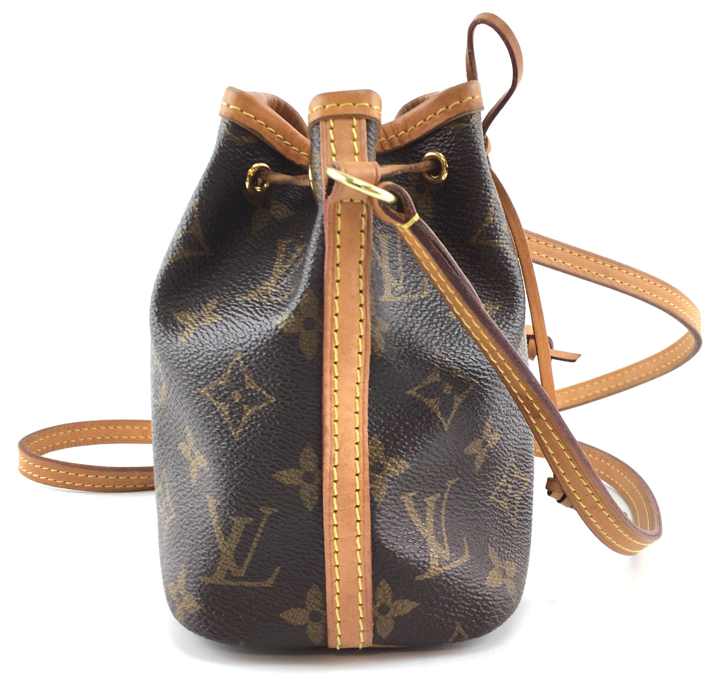 Louis Vuitton Nano Noe Monogram Canvas