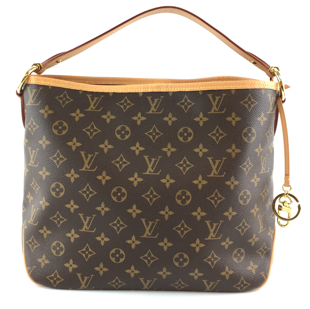 Louis Vuitton Delightful Hobo Neo PM Monogram Canvas
