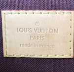 Louis Vuitton Favorite MM Monogram Canvas