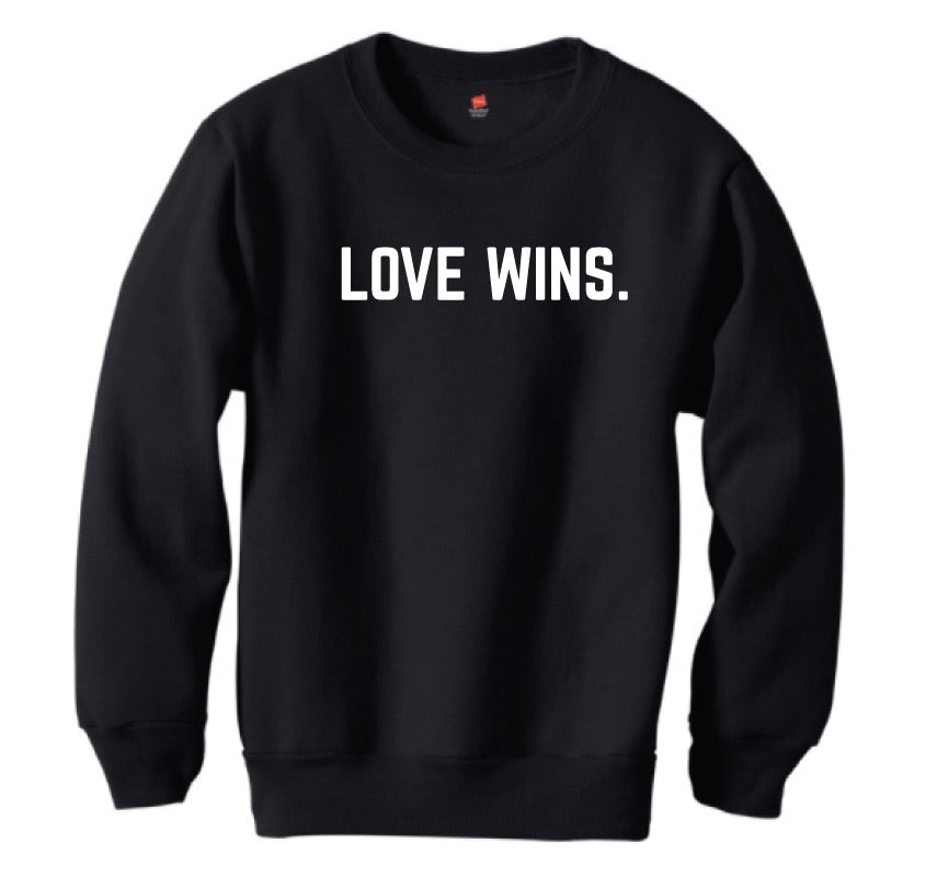 LOVE WINS. pullover - youth