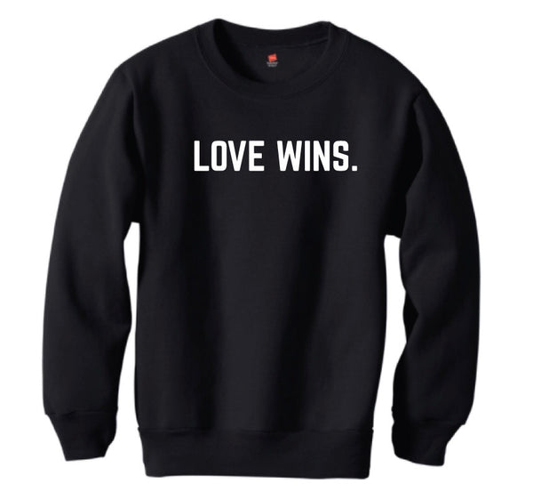 **SALE** LOVE WINS. pullover - youth