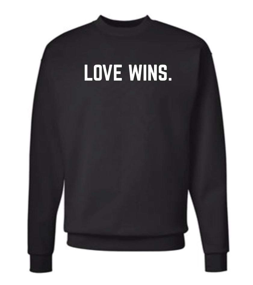 LOVE WINS. pullover - adult