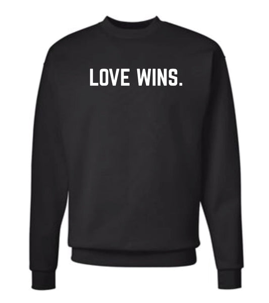 **SALE** LOVE WINS. pullover - adult