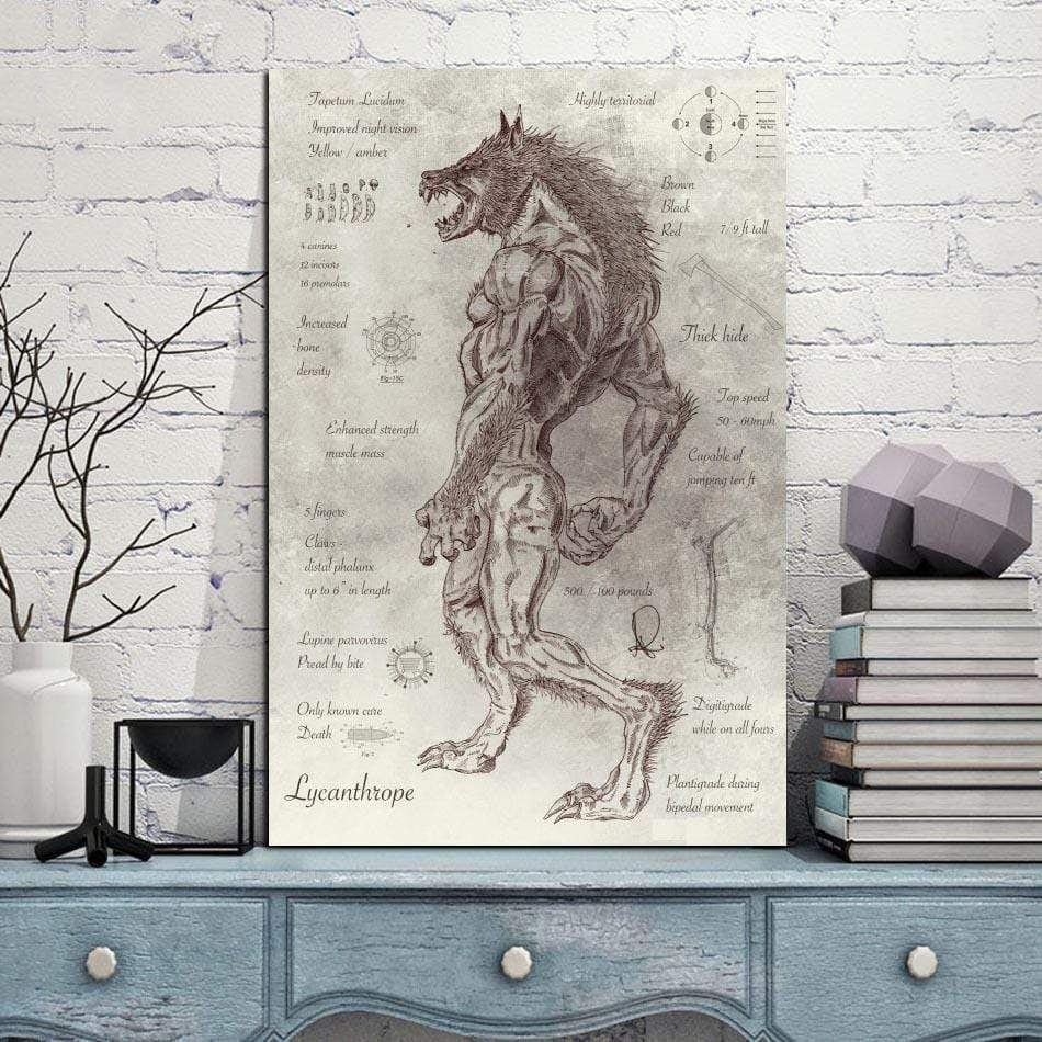 Werewolf Anatomy Scroll 40x60cm Unframed
