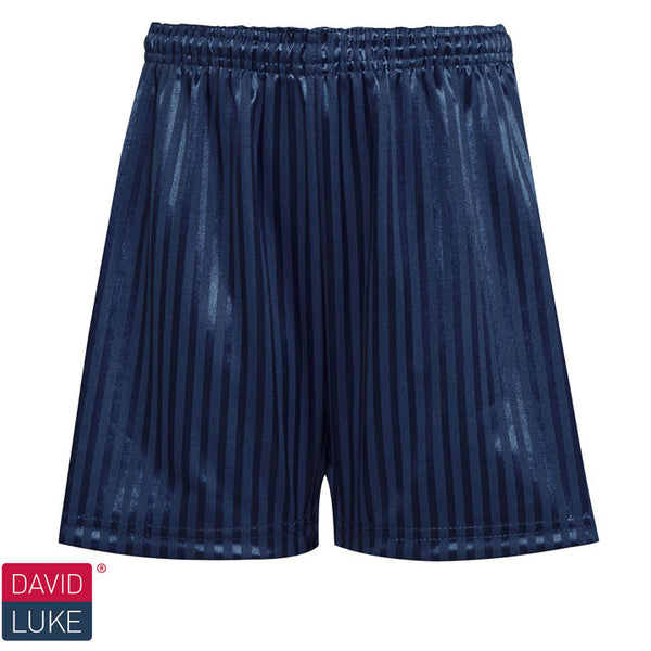 Polyester Shadow Stripe Navy Blue Sports Shorts
