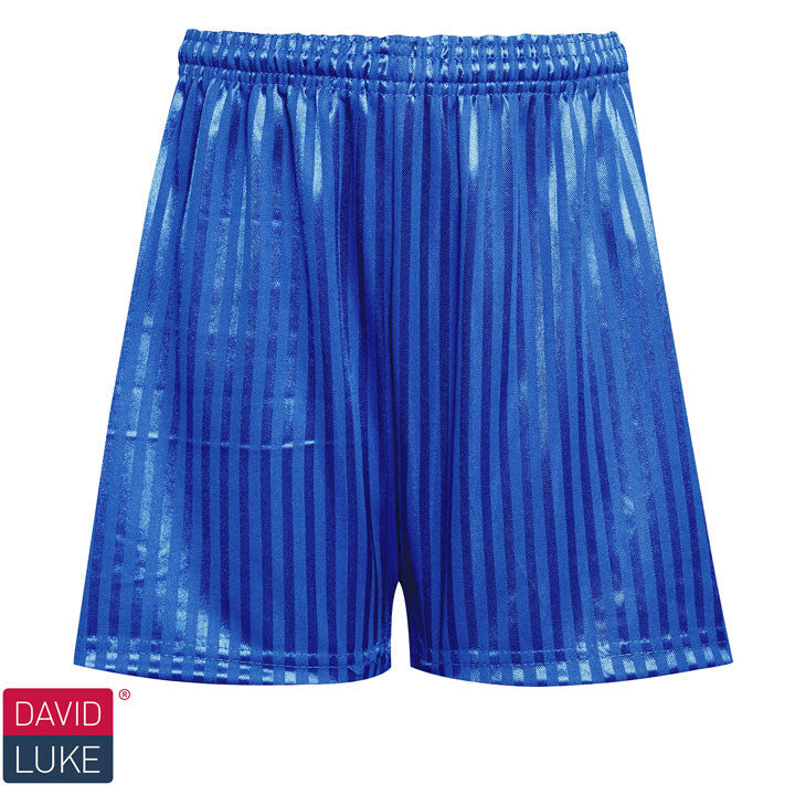 Polyester Shadow Stripe Royal Blue Sports Shorts