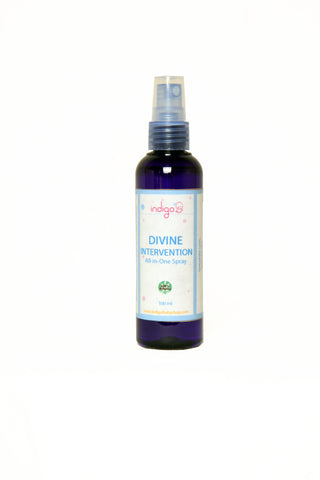 Divine Intervention Hand Sanitizer