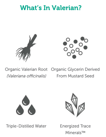 Valerian Ingredients
