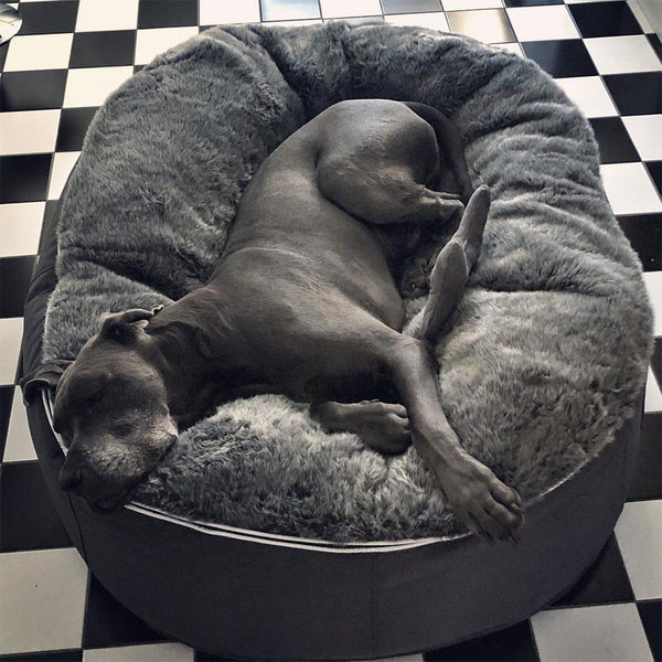 (XXL) Luxury Indoor/Outdoor Pet Bed (original)