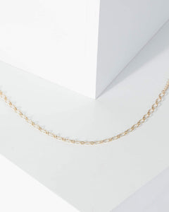 Colette by Colette Hayman Gold Round Linked Chain Detail Anklet