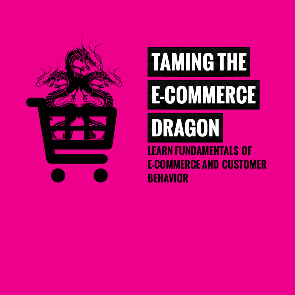 TAMING THE E-COMMERCE DRAGON