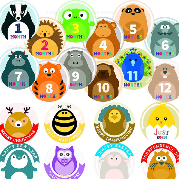 20 Baby Monthly Stickers for Baby Girls or Boys
