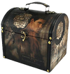 The Twilight Saga: New Moon - Vintage Carrying Case Jacob & Dreamcatc - Ozzie Collectables