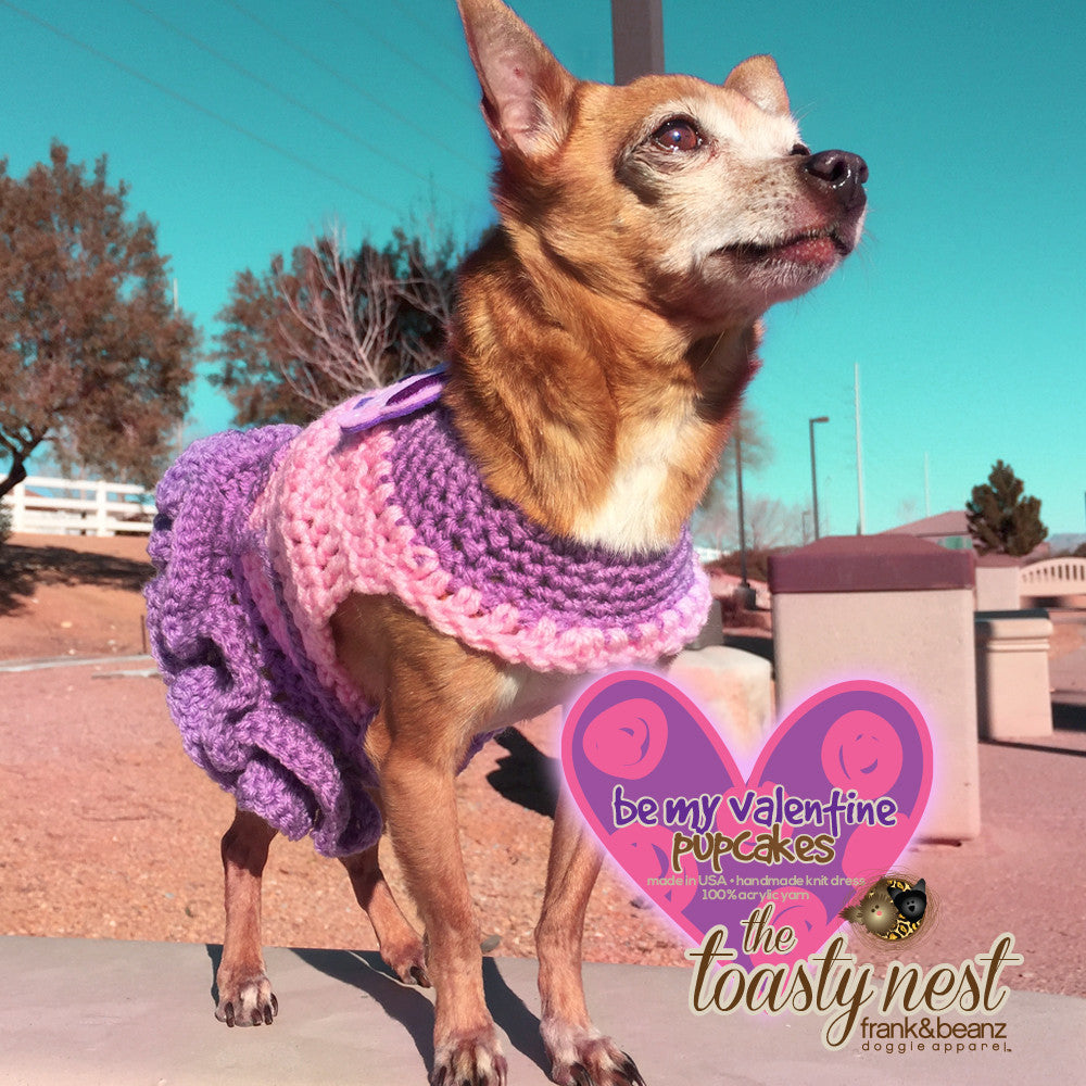 Be my Valentines Pupcake Dress Gift-Away