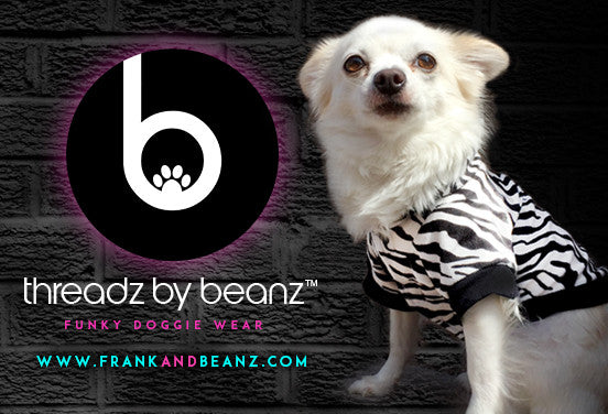 Threadz by Beanz Funky Dog Clothes