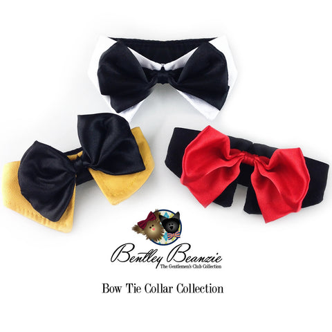 Gentlemen's Dog Bow Tie Collar Collection