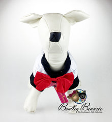 White Dog Tuxedo, Dog Clothes- Caviar Dreams