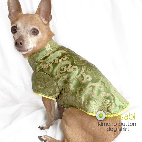 Wasabi: Lime Kimono Button Dog Shirt