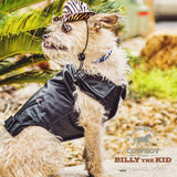 Billy the Kid, Brown Leather Dog Jacket, Winter Dog Coat