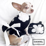 Chewnel style Dog Sweater Dress and Purse