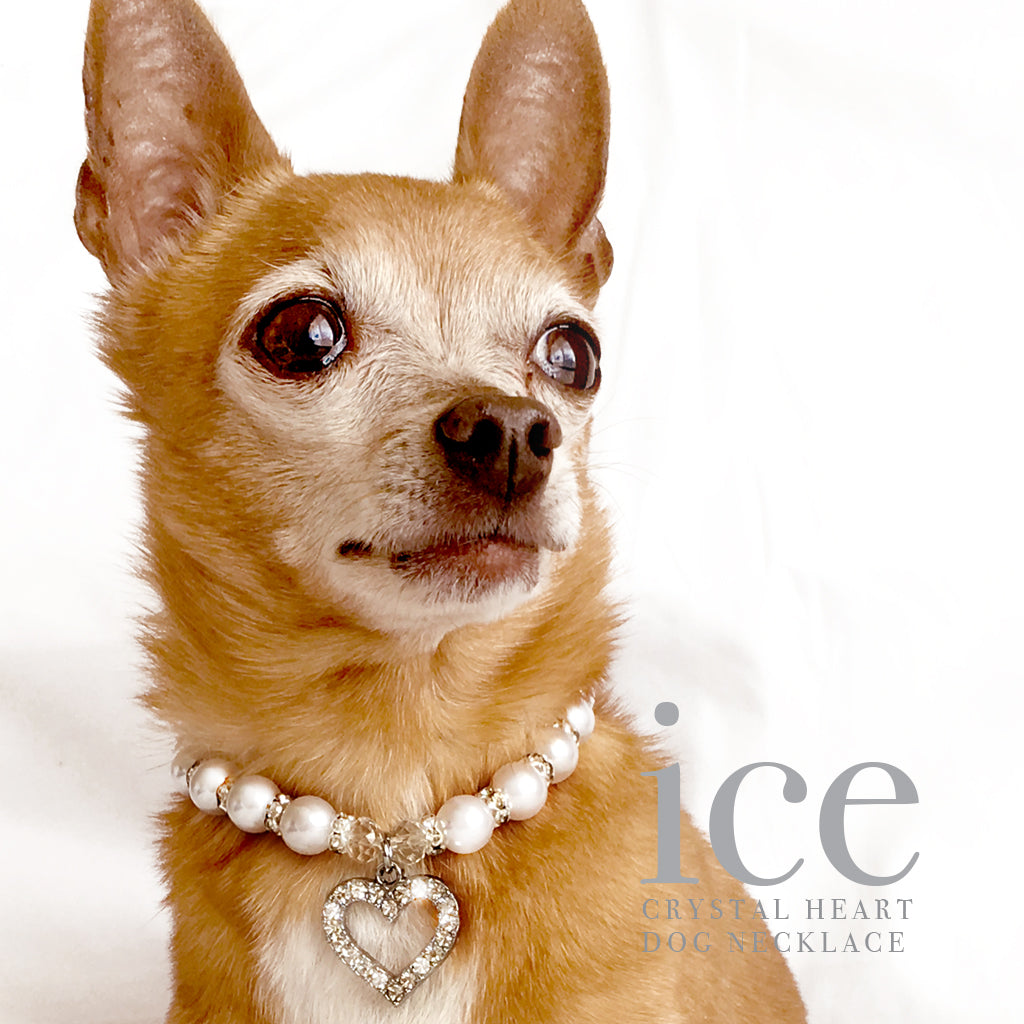 Heart and Pearl Rhinestone Dog Collar Necklace