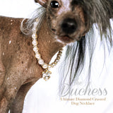 The Duchess-Diamond Heart Pearl Dog Necklace