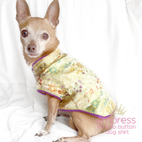 Golden Cream Kimono Dog Shirt - Empress