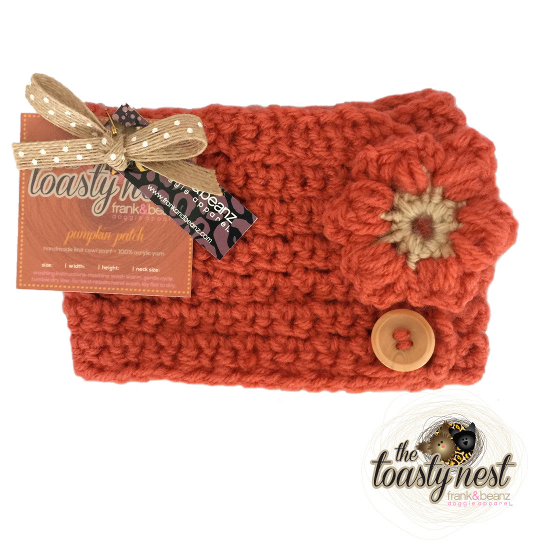 Toasty Nest Dog Scarf Pumpkin Patch Frank And Beanz Doggie Apparel