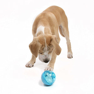 BEST IQ Ball Interactive Food Dispensing Dog Toy