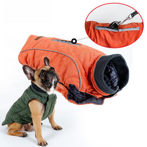 Brisk French Bulldog Winter Coat